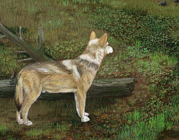 Wolves in the Forest - detail 2